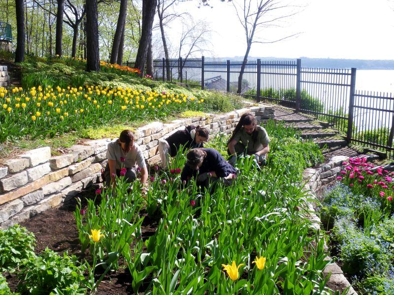 Horticulteurs au travail, parc du Bois-de-Coulonge