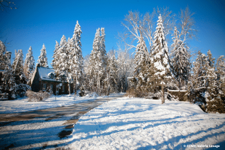 Activité d'hiver à Québec : Parc des Moulins
