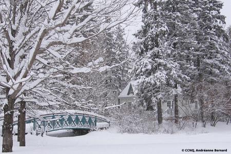 Activité d'hiver à Québec : Parc du Bois-de-Coulonge