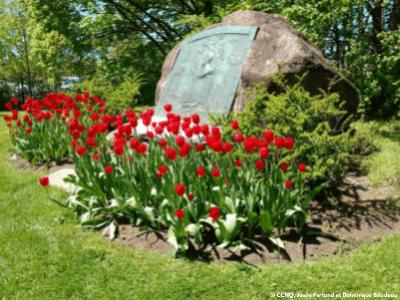 Fleurs dans le parc des Moulins à Québec