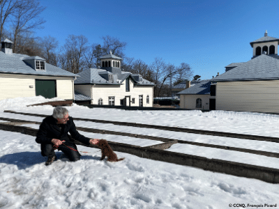 Séance d'obéissance et de socialisation avec son chien à Québec